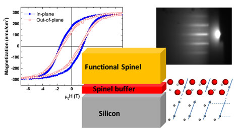 Highlight Spinels on Silicon tamany web