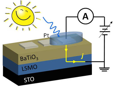 steady and transient photocurrent web