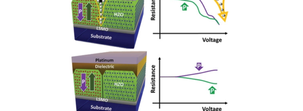 Blocking of Conducting Channels Widens Window for Ferroelectric Resistive Switching in Interface-Engineered Hf0.5Zr0.5O2 Tunnel Devices
