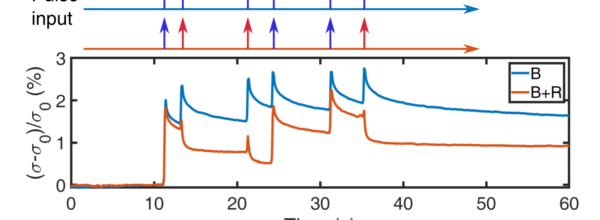 Photoinduced Persistent Electron Accumulation and Depletion in LaAlO3/SrTiO3 Quantum Wells.