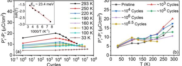 Thermal evolution of ferroelectric behavior in epitaxial Hf0.5Zr0.5O2